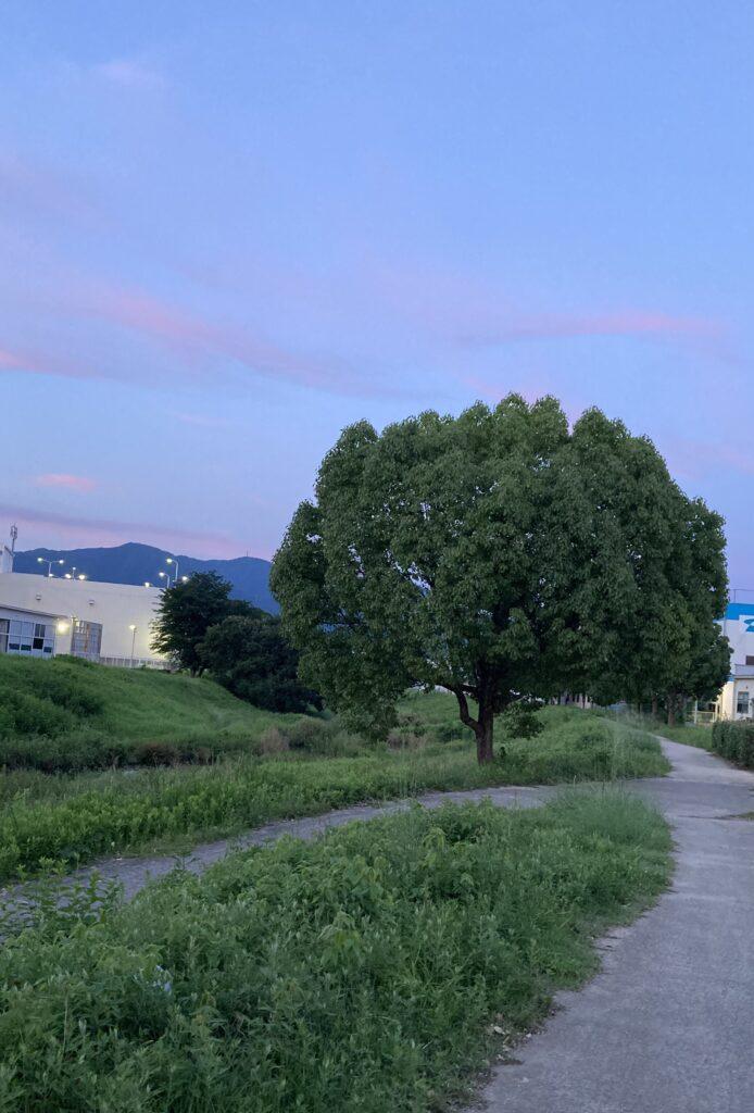お休みの日の楽しみ   クリスタルビューティー 広島 天然100%ヘナ 美と健康のエステ