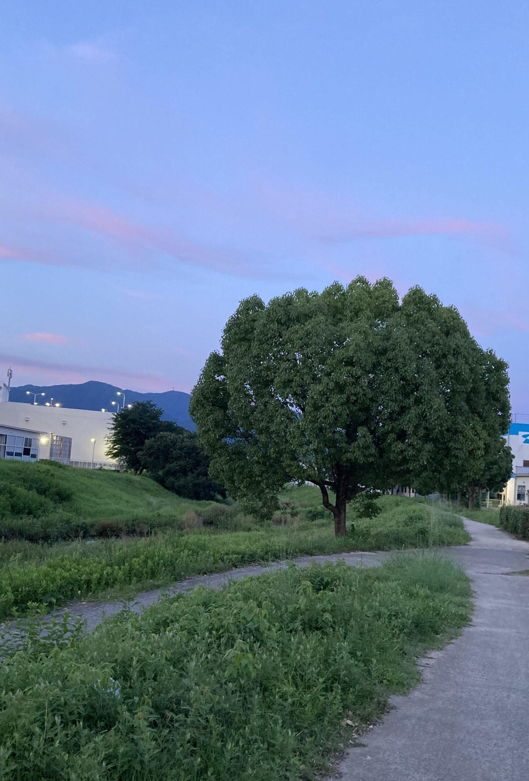 お休みの日の楽しみ | クリスタルビューティー 広島 天然100%ヘナ 美と健康のエステ