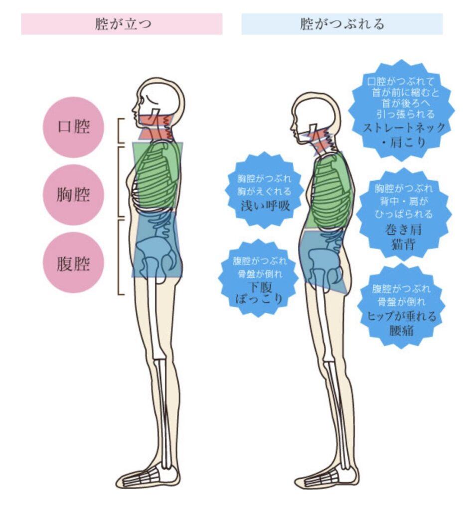 全身の機能改善さとう式リンパケアとは   クリスタルビューティー 広島 天然100%ヘナ 美と健康のエステ